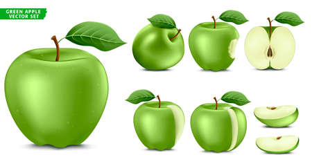 Green Apple Fruit Ripe Realistic 3D Food Vector Set. Whole Half and Sliced Version In Isolated White Background