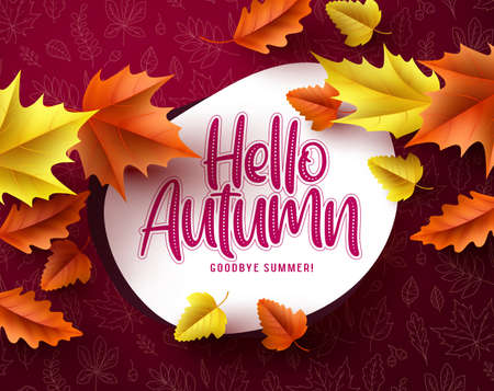 Hello autumn vector banner greeting template. Hello autumn text in white space with seasonal dry maple leaves falling in red pattern background. Vector illustration. Ilustracja