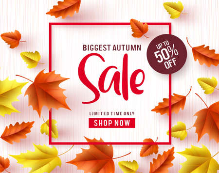 Autumn sale vector banner. Biggest autumn sale text with maple leaves and red frame in white textured background for fall season marketing design. Vector illustration.