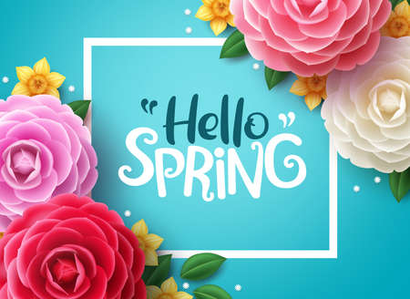 Hello spring vector background. Spring greeting text, colorful camellia flowers and crocus flowers in blue framed background. Vector illustration.