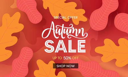 Fall season sale vector banner background. Autumn seasonal sale text with colorful maple and oak leaves for marketing promotion design. Vector illustration. 向量圖像