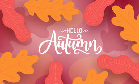 Autumn vector background design. Hello autumn greeting text in empty space with seasonal maple and foliage leaves in abstract background. Vector illustration.