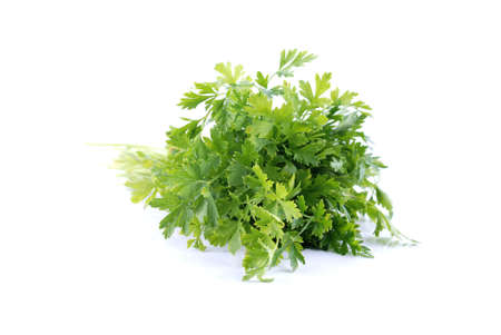 herbolaria: Las hojas verdes de perejil en el fondo blanco. Ver la luz - de enfoque suave.