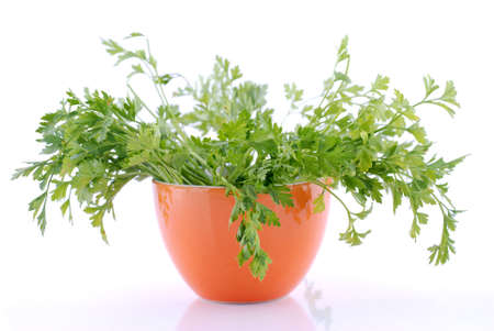 herbalist: Green tops of parsley in orange cup on white background. View in light - soft focus.