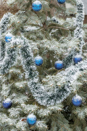 New Years and Christmas decorations on the Christmas tree with natural snow Stock Photo