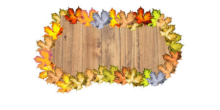 Wooden background with a colorful autumn leaves on a white background Stock Photo