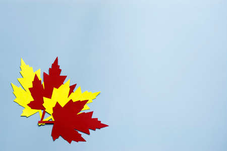 yellow and red paper autumn leaves on a blue background Stock Photo - 131724940
