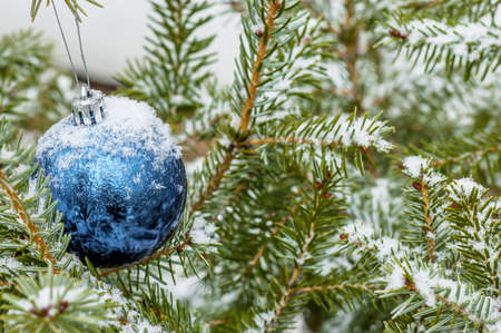 New Year Eve decoration: Blue meatlic Ball on a Christmas Tree