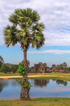 Tower and galleries of Angkor Wat Temple at sunny morning. Siem Reap, Cambodia