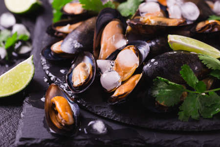 Raw seafood - fresh uncooked mussels on ice with cilantro and coriander on black iron plate over dark slate stone background. Healthy food concept. Top view. Stock Photo