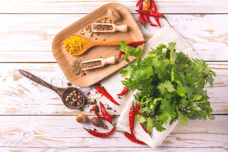 peppery: Indian Asian spices and cilantro on white background. Copyspace. Top view