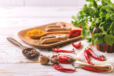 peppery: Indian Asian spices and cilantro on white background. Copyspace. Horizontal view Stock Photo