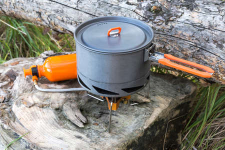 primus: portable gas burner and pot on the wooden logs.