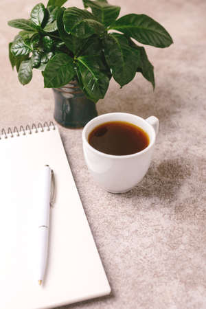 Empty notebook, pen, plant tree and coffee on gray stone background. Workplace. Top view Stock Photo