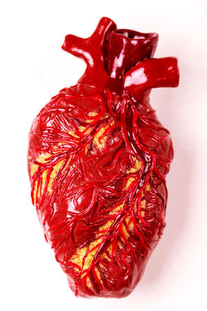 Human heart clay model. White background Medical abstract concept