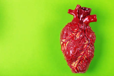 Human heart clay model. Green background Medical abstract concept