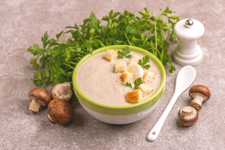 Tasty pureed mushroom soup in clay bowl with ingredients. Healthy food concept. Gray wooden background. Horizontal view. Copy space Stock Photo