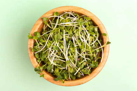 Germinated radish sprouts in wooden bowl on light green background. Vegetable green for garnishing salads, soups, plates, and sandwiches. Copy space Foto de archivo