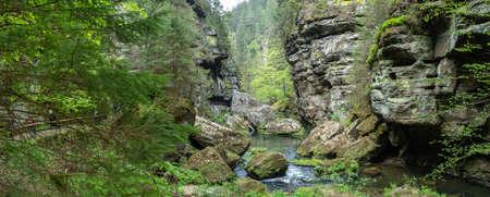 Bohemian Switzerland The Wilde Klamm near Hrensko and Decin 版權商用圖片