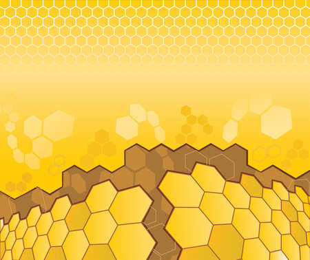 honey bees: Abstract pattern from cell for design