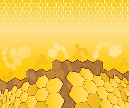 celula animal: Resumen patr�n de c�lulas para el dise�o Vectores