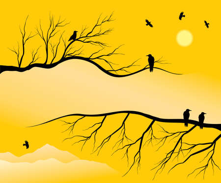 twigs: background composed of branchs & crow Illustration