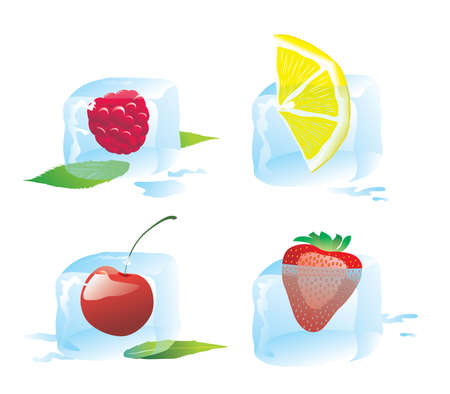 fleshy: a set of ice cube with berry Illustration