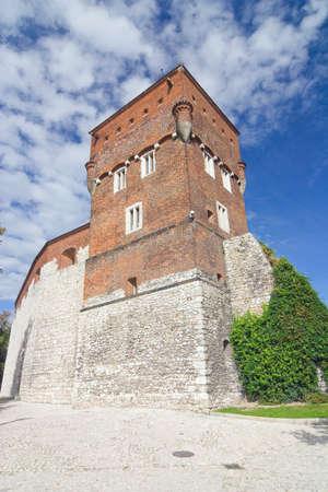 Wawel, krakow Stock Photo - 14814300