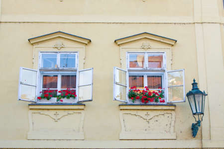 Window and flower, Prague, Czech Republic photo