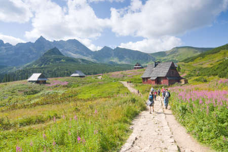 seafront: Hikers in Tatra mountains  Editorial