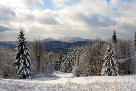 Winter in Bieszczady, Poland photo