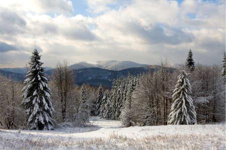 Winter in Bieszczady, Poland Stock Photo - 15519682