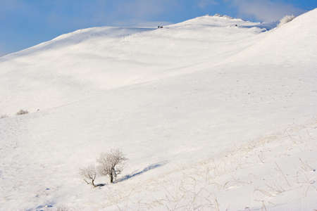 winter mountains landscape, Bieszczady National Park, Poland photo