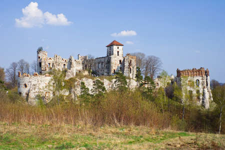 Castle Rudno - Poland. Medieval fortress in the Jura region Stock Photo - 16624833