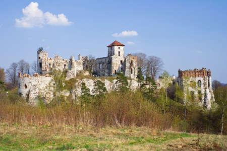 Castle Rudno - Poland. Medieval fortress in the Jura region Stock Photo - 16624833
