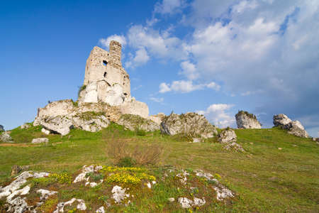 Ruins of medieval castle Mirow in Poland Stock Photo - 16624707