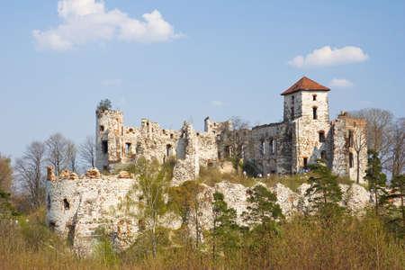 Castle Rudno - Poland. Medieval fortress in the Jura region Stock Photo - 16624780