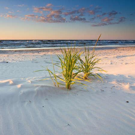 dune: puesta de sol en la playa Foto de archivo