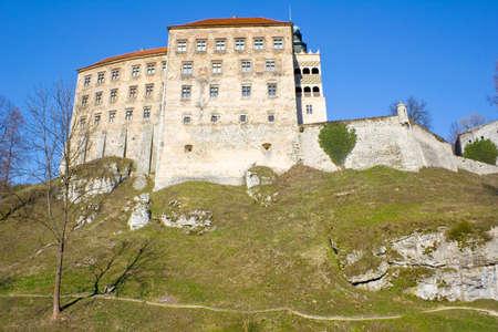a cudgel: Pieskowa Skala castle near Krakow