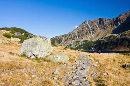 Summer in 5 lakes valley in High Tatra Mountains  photo