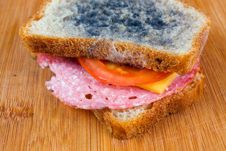 moldy sandwich with salami, tomatoes on a chopping board photo