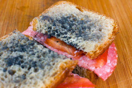 moldy: moldy sandwich with salami, tomatoes on a chopping board Stock Photo