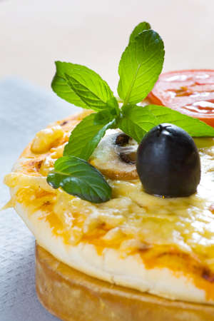 Pizza made with Salami, Mozzarella, Mushrooms, Olives and Tomato Sauce  photo