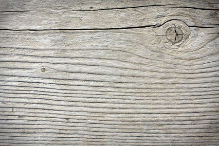 Old wood texture, background photo