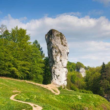jura: Maczuga Herkulesa, rock in National Ojcow Park, Poland