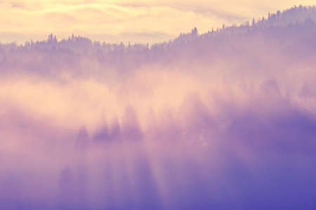 Beautiful misty morning in mountains photo