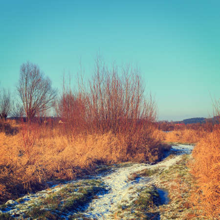 lomography: dry grass field, vintage color tone Stock Photo