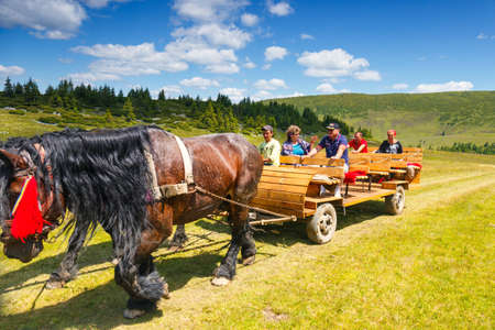 horse cart: Rodna Mountains, Romania, 05 JULY 2015: Group of tourists riding a horse cart in the Rodna Mountains, Romania Editorial