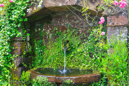 source: Close up of water source in the mountains, Madeira, Portugal