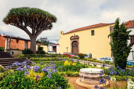the historical center of La Orotava town with drado tree, Tenerife Island, Spain
